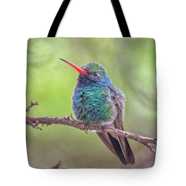 Broad-billed Hummingbird 3652 Tote Bag
