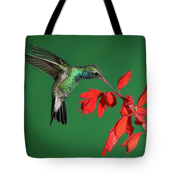 Broad-billed Hummingbird  Tote Bag