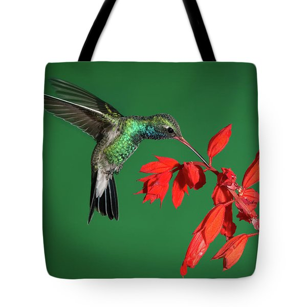 Broad-billed Hummingbird  Tote Bag