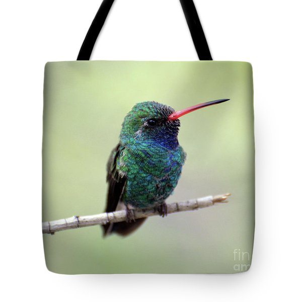 Broad-billed Hummingbird Portrait Tote Bag