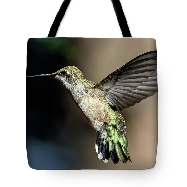 Broad-tailed Hummingbird Female Tote Bag