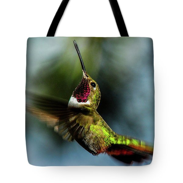 Broad-tailed Hummingbird In Flight Tote Bag