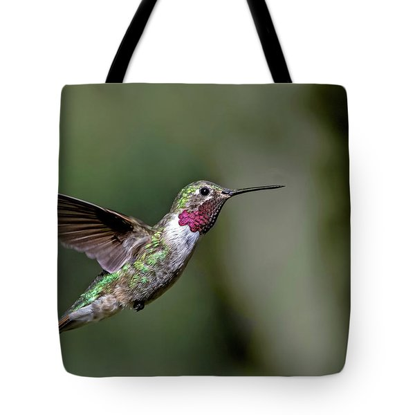 Broad-tailed Hummingbird Male Tote Bag