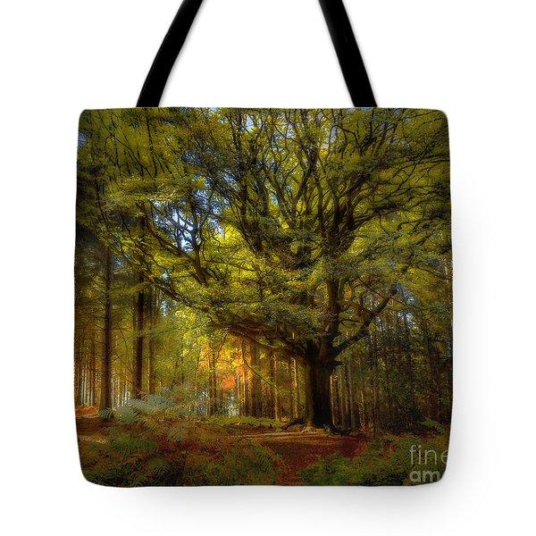 Broceliande Forest Tote Bag