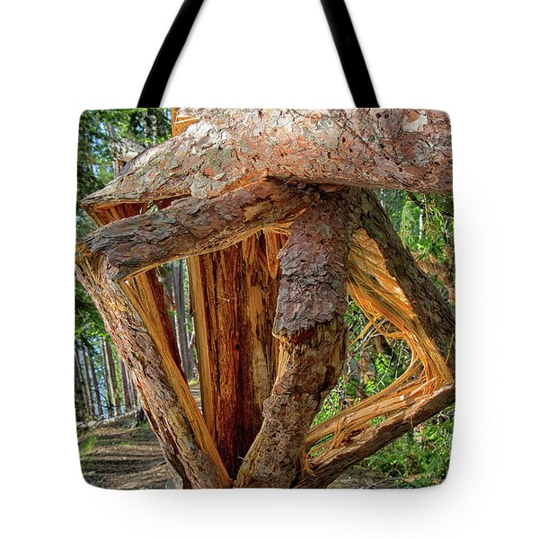 Broken In The Forest Tote Bag