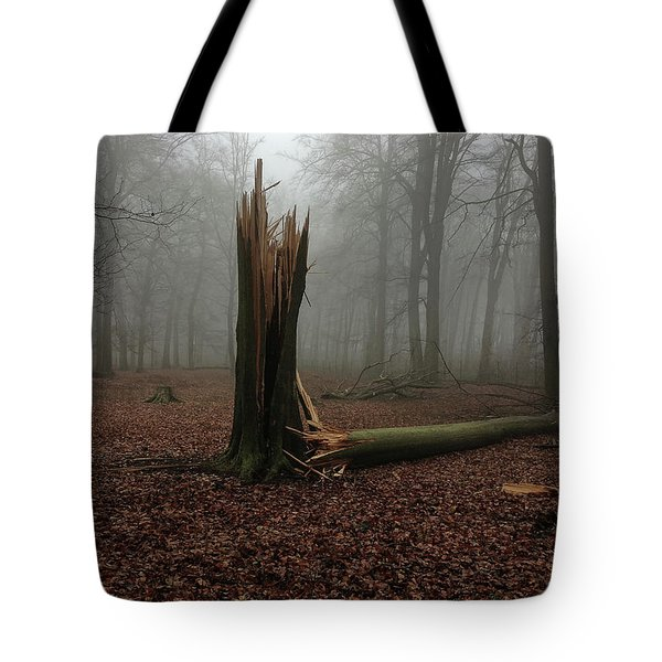 Broken Oak Tote Bag