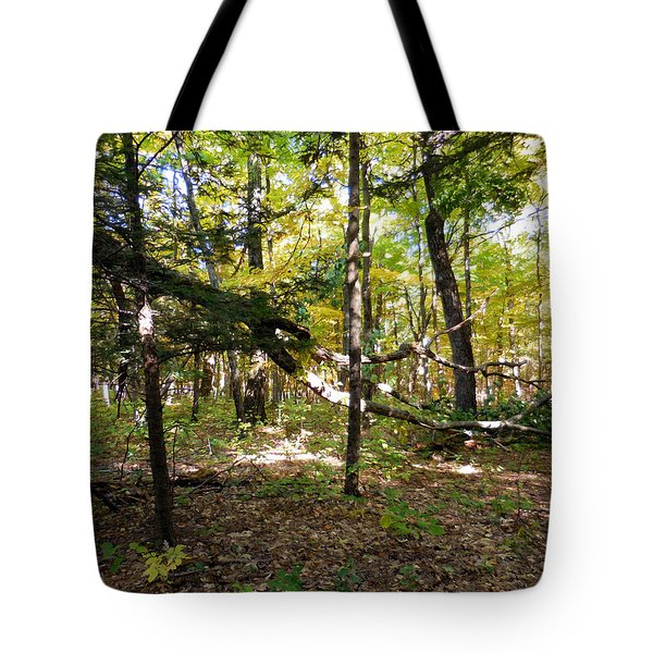 Broken Tree 1 Tote Bag
