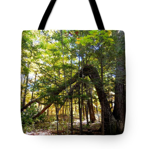 Broken Tree 2 Tote Bag