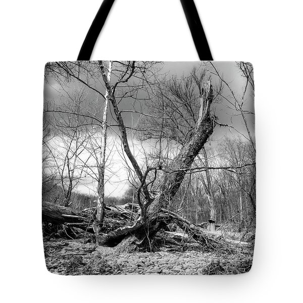 Tote Bag featuring the photograph Broken Tree by Alan Raasch