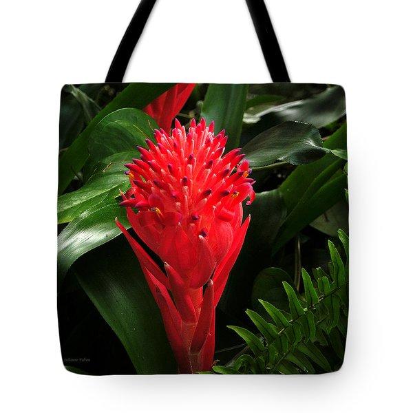 Bromeliad 9-18-15 Tote Bag