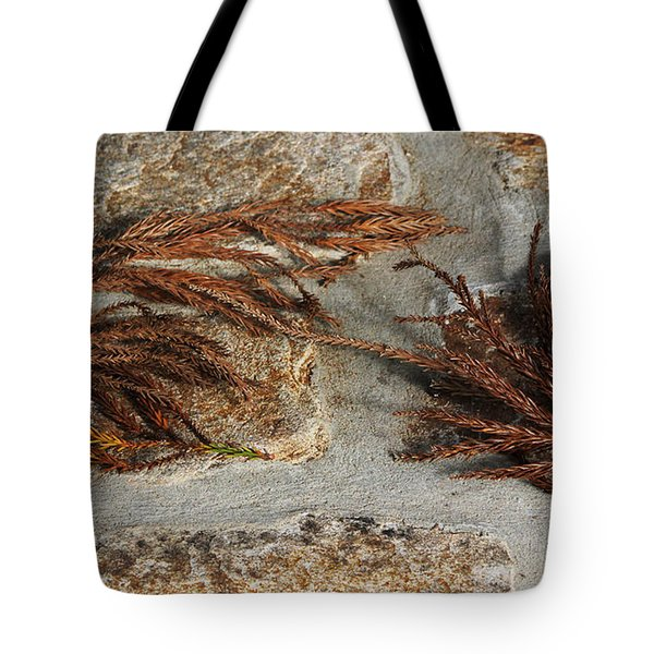 Tote Bag featuring the photograph Bronze Symmetry by Deborah  Crew-Johnson