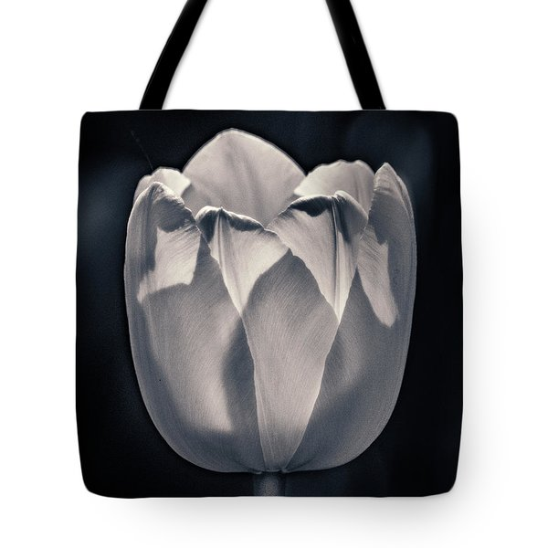Tote Bag featuring the photograph Brooding Virtue by Bill Pevlor