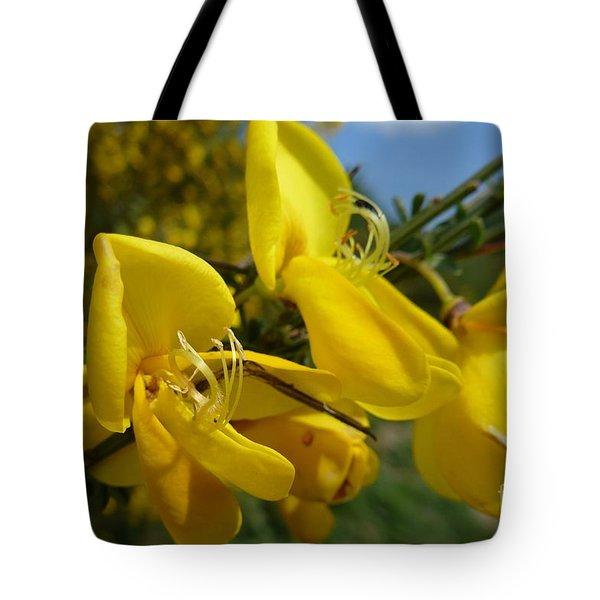 Broom In Bloom 3 Tote Bag