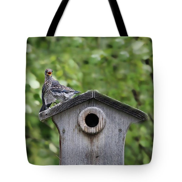 Tote Bag featuring the photograph Brother From Another Mother by Jackson Pearson
