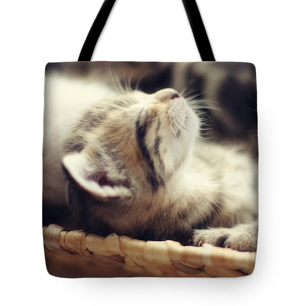 Tote Bag featuring the photograph Brotherly Love by Amy Tyler