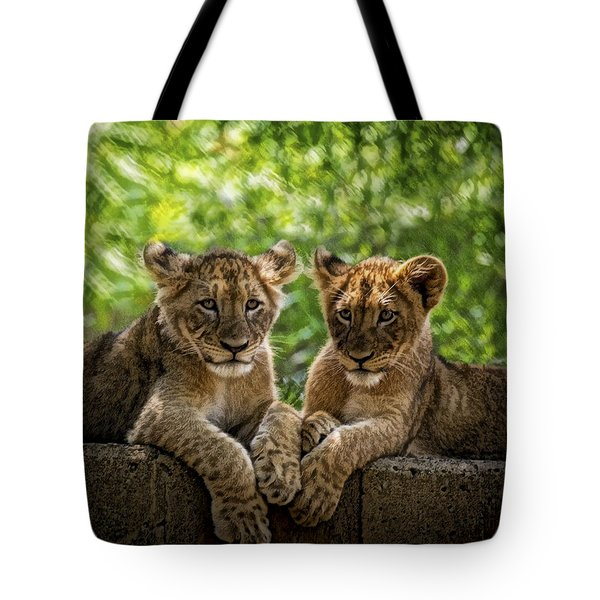 Brothers Chillin Tote Bag