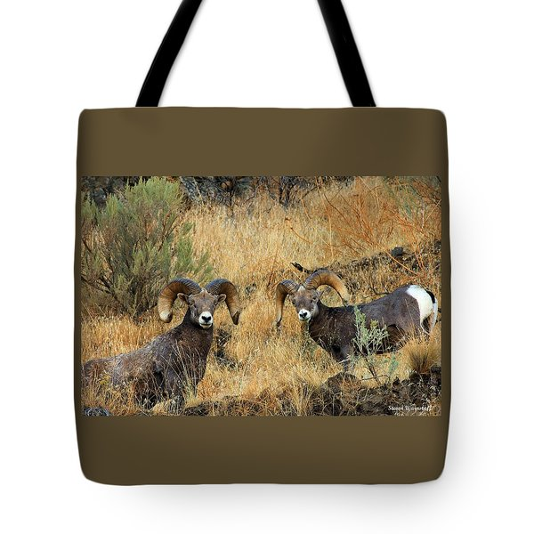 Brothers Tote Bag by Steve Warnstaff