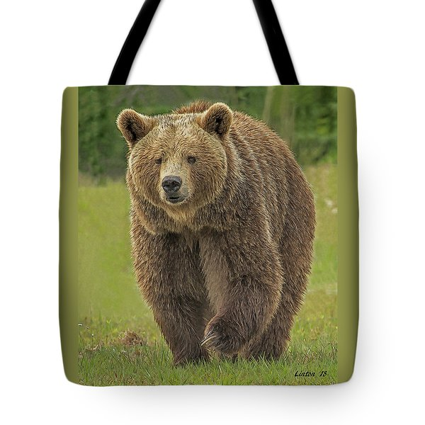 Brown Bear 1 Tote Bag