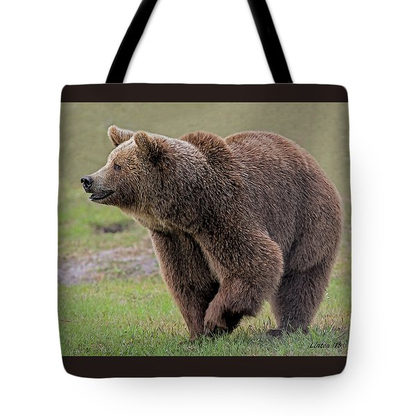 Brown Bear 14.5 Tote Bag