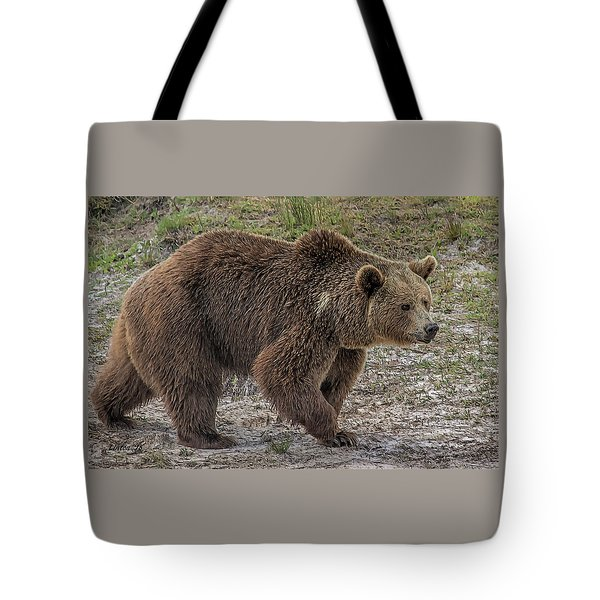 Brown Bear 6 Tote Bag