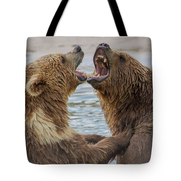 Brown Bears4 Tote Bag