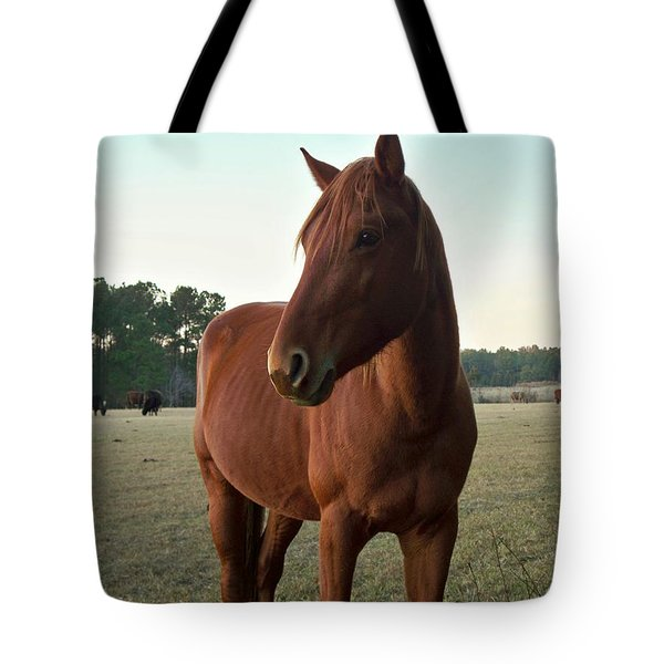 Tote Bag featuring the photograph Brown Beauty by Betty Northcutt
