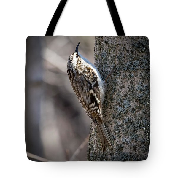 Tote Bag featuring the photograph Brown Creeper  by Ricky L Jones