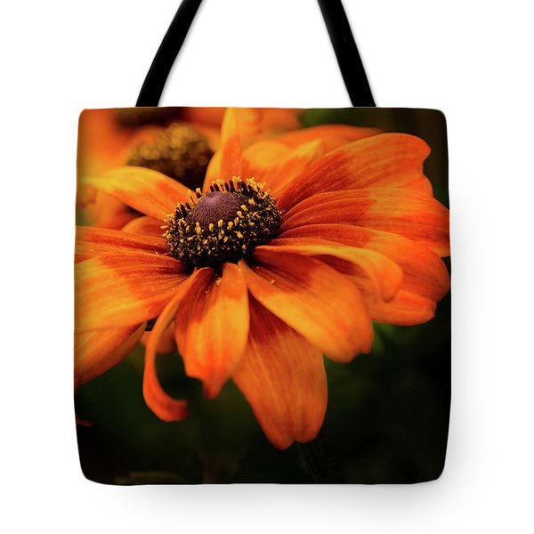 Tote Bag featuring the photograph Brown Eyed Susan by Mary Jo Allen