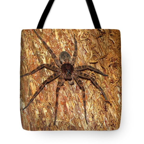 Brown Fishing Spider Tote Bag by Joshua Bales