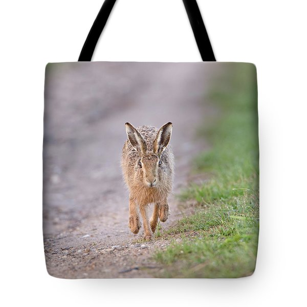 Brown Hare Approaching Down Track Tote Bag