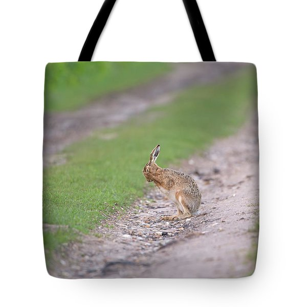 Brown Hare Cleaning Tote Bag