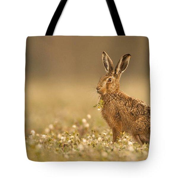 Brown Hare  Tote Bag