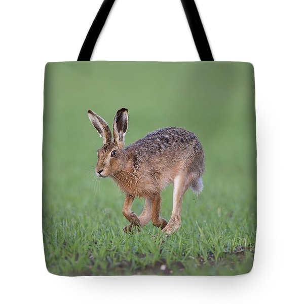 Brown Hare Running Tote Bag
