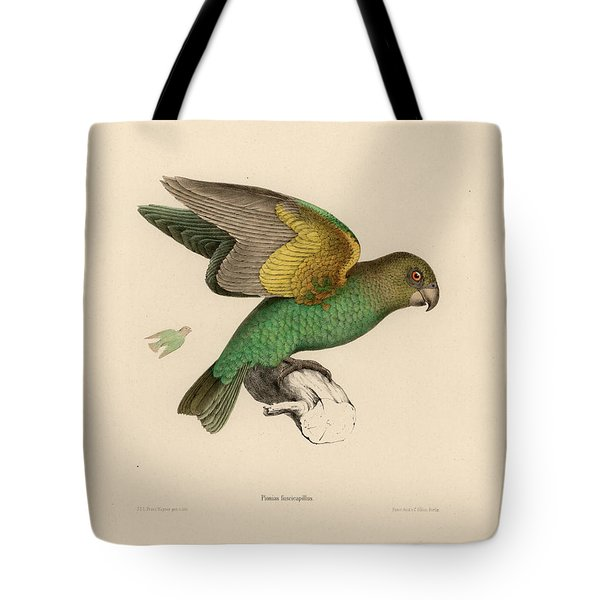 Brown-headed Parrot, Piocephalus Cryptoxanthus Tote Bag
