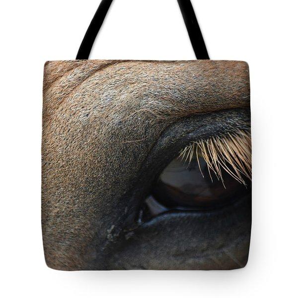 Brown Horse Eye Tote Bag
