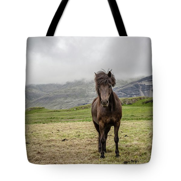 Tote Bag featuring the photograph Brown Icelandic Horse by Edward Fielding