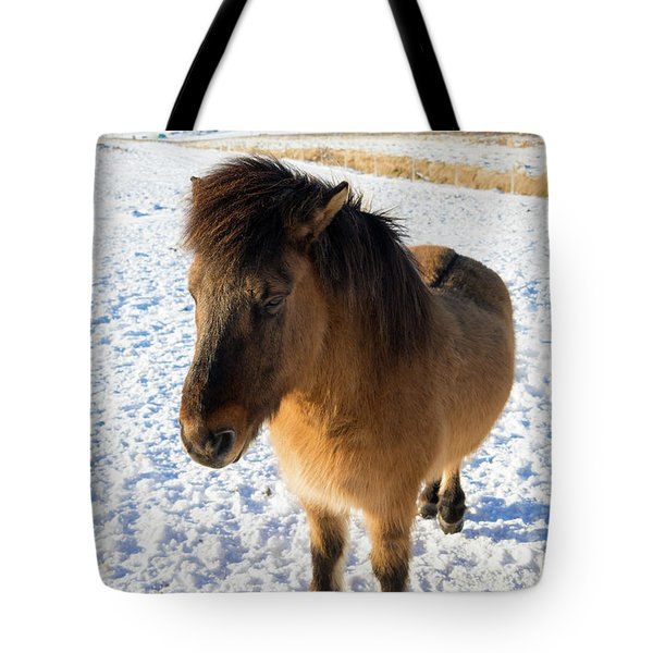 Tote Bag featuring the photograph Brown Icelandic Horse In Winter In Iceland by Matthias Hauser