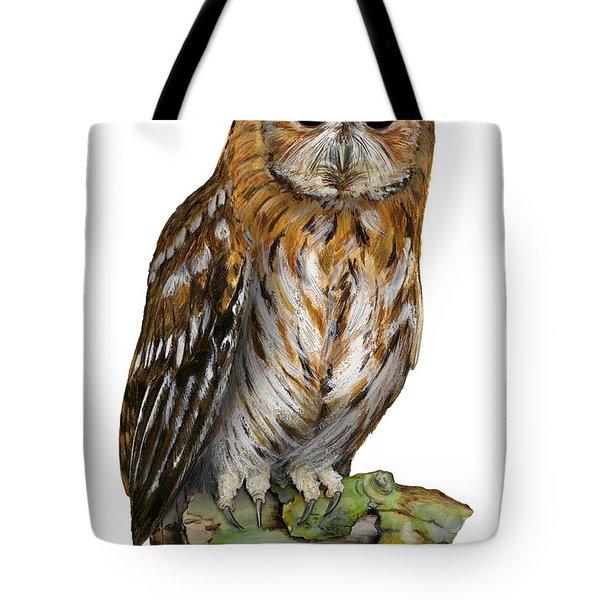 Brown Owl Or Eurasian Tawny Owl  Strix Aluco - Chouette Hulotte - Carabo Comun -  Nationalpark Eifel Tote Bag