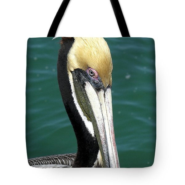 Brown Pelican  Tote Bag by Allan  Hughes
