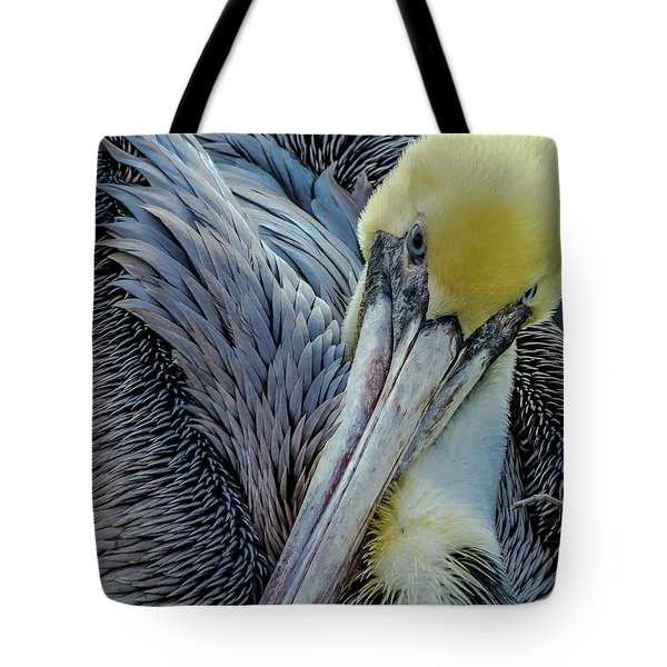Tote Bag featuring the photograph Brown Pelican by Bill Gallagher
