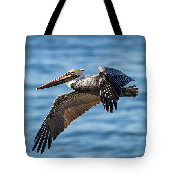 Brown Pelican In Flight Tote Bag