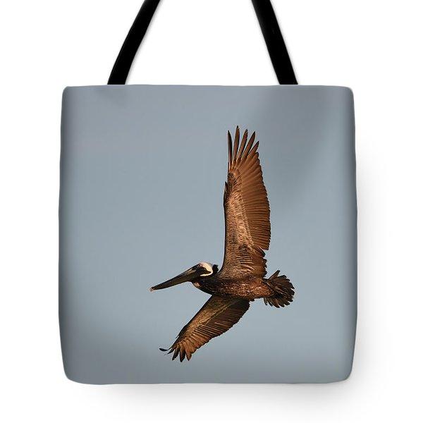 Brown Pelican In Flight No. 2 Tote Bag