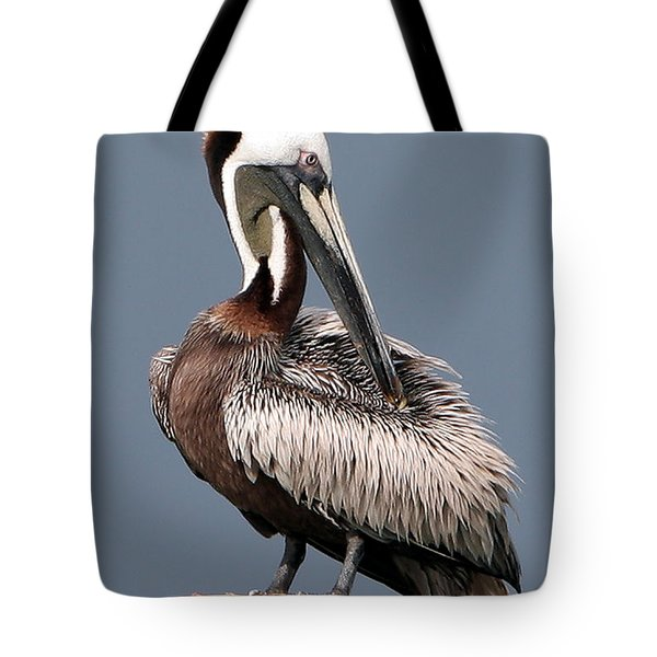 Tote Bag featuring the photograph Brown Pelican by Ken Barrett