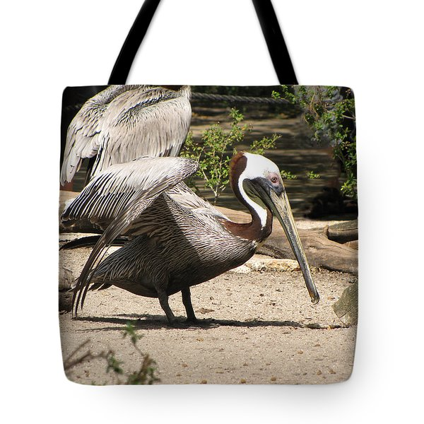 Brown Pelican Tote Bag by Martha Ayotte