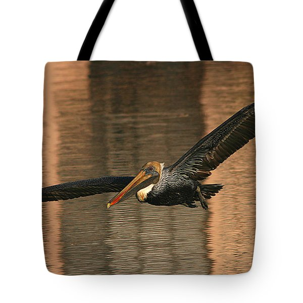 Tote Bag featuring the photograph Brown Pelican On A Sunset Flyby by Max Allen