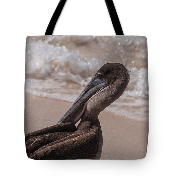 Brown Pelican On Las Bachas Beach Santa Cruz Indefatigable Island  Galapagos Islands Tote Bag