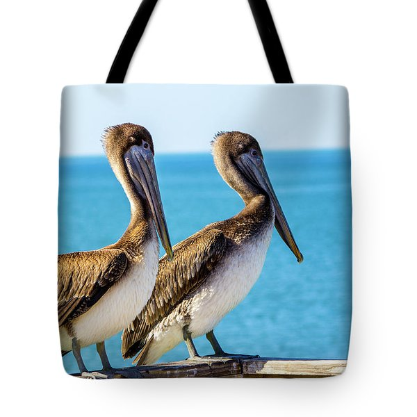Brown Pelican Pair Tote Bag