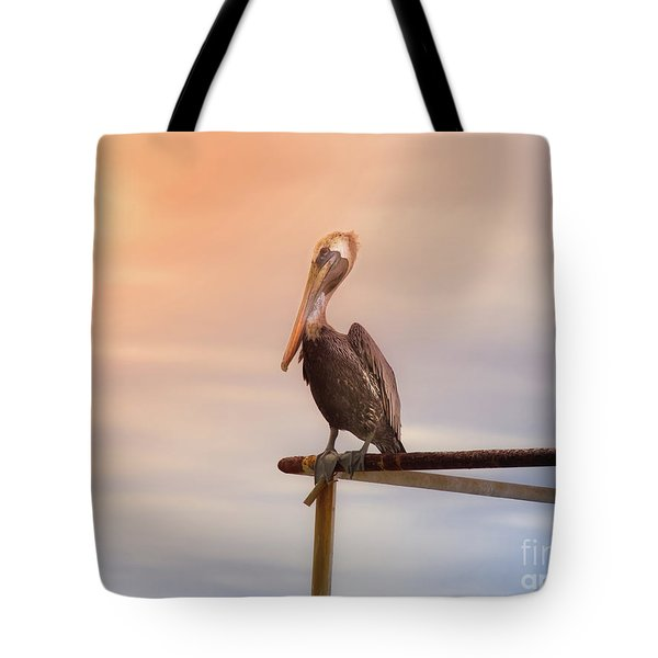 Tote Bag featuring the photograph Brown Pelican Sunset by Robert Frederick