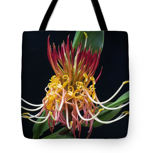 Tote Bag featuring the photograph Brownea Macrophylla Tropical Flower by Ken Barrett