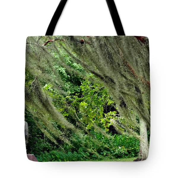 Brownwell Memorial Park Tote Bag